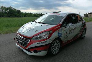 Gianluca Saresera, Daniel Taufer Peugeot 208 R2