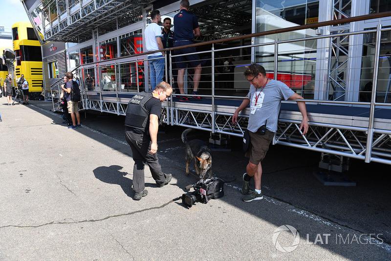 Seguridad y un perro