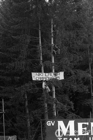 Fans de Niki Lauda, suben a los altos árboles que rodean el circuito para echar un vistazo a su héroe