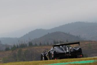 #12 Eurointernational Ligier JS P3 - Nissan: James Dayson, Vadim Meshcheriakov