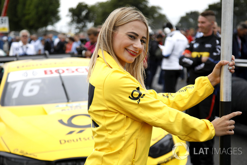 La grid girl di Timo Glock, BMW Team RMG