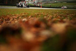 Henry Neal, Halfords Yuasa Racing Honda Civic Type R