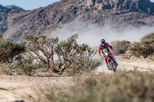 #88 Monster Energy Honda Team: Bort Joan Barreda