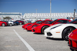 Collection of Ferrari's