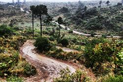 Argentinian roads