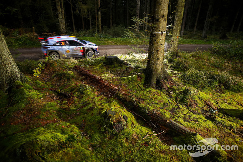 #7: Ab in den Wald!