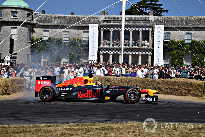 Red Bull RB8 Patrick Friesacher