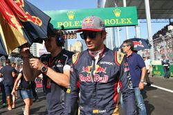 Carlos Sainz Jr., Scuderia Toro Rosso on the grid