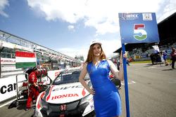 Grid girl de Norbert Michelisz, Honda Racing Team JAS, Honda Civic WTCC