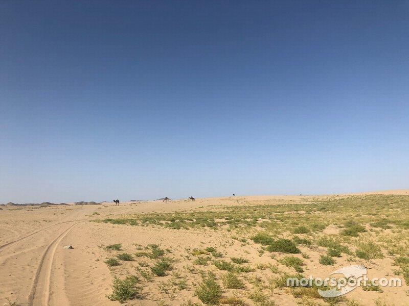 Etapa 7 (12 de janeiro): de Riade a Wadi Al-Dawasir (741 km, sendo 546 cronometrados)