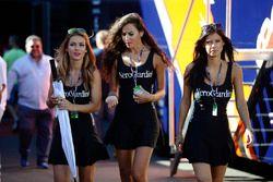 De charmantes jeunes femmes dans le paddock