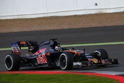 Sette Camara, Scuderia Toro Rosso STR11