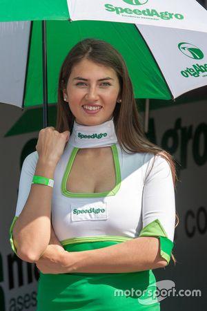 Paddock Girls Argentina