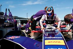 Jose Maria Lopez, DS Virgin Racing, sur la grille