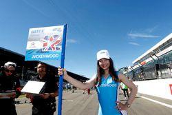 Chica de la parrilla de Rob Huff, All-Inkl Motorsport, Citroën C-Elysée WTCC