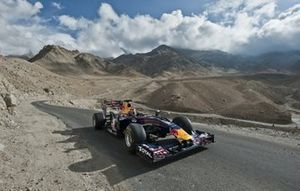 Neel Jani, Red Bull Racing