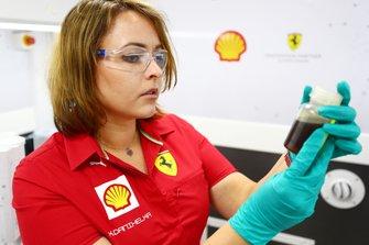 Shell takım elemanı