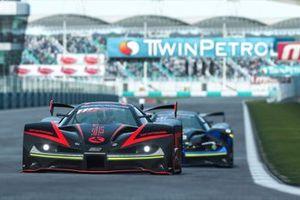#99, Michi Hoyer, Absolute Racing