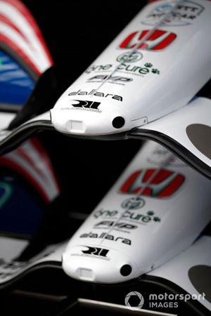 Graham Rahal, Rahal Letterman Lanigan Racing Honda, nose