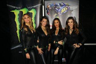 Des Monster girls