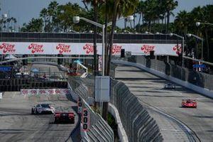 #31: Whelen Engineering Racing Cadillac DPi, DPi: Felipe Nasr, Pipo Derani, #1: Paul Miller Racing Lamborghini Huracan GT3, GTD: Madison Snow, Bryan Sellers