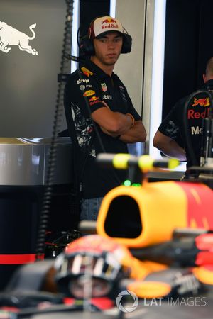 Pierre Gasly, pilote d'essais Red Bull Racing