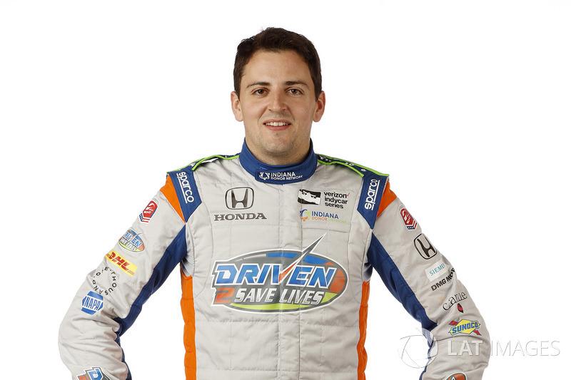 #25: Stefan Wilson, Andretti Autosport, Honda