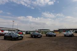 Classic Aston Martins on display