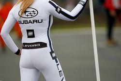 Subaru Team BMR grid girl