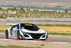 #93 Acura NSX: Peter Kox