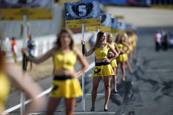 Grid girl of Petru Florescu, Fortec Motorsports Dallara F317 - Mercedes-Benz