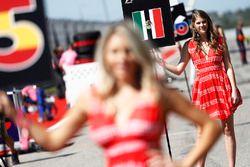 La Grid Girl de Sergio Perez, Force India