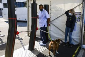 Lewis Hamilton, Mercedes-AMG F1 arrives with his dog Roscoe