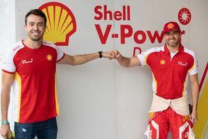 Renovação de Zonta com Shell e RCM