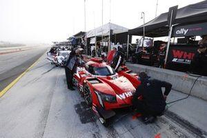 Des membres de l'équipe de #31: Whelen Engineering Racing Cadillac DPi, DPi: Felipe Nasr, Pipo Derani