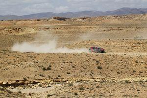 #333 Peugeot DKR 3008