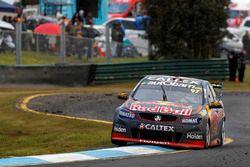 Shane van Gisberge ve Alexander Premat, Triple Eight Race Engineering Holden