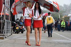 Hermosas chicas de Ducati