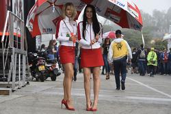 Ducati-Girls