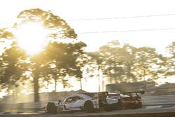 #7 Acura Team Penske Acura DPi, P: Helio Castroneves, Ricky Taylor, Graham Rahal, #51 Spirit of Race Ferrari 488 GT3, GTD: Paul Dalla Lana, Pedro Lamy, Mathias Lauda, Daniel Serra