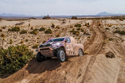 #334 Toyota: Peter van Merksteijn, Maciej Marton