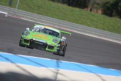 Stefano Stefanelli, Dinamic Motorsport