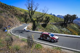 Pierre-Louis Loubet, Vincent Landais, skoda Fabia R5, FIA ERC, Rally Islas Canarias