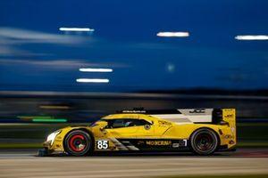 #85 JDC-Miller Motorsports Cadillac DPi, DPi: Chris Miller, Tristan Vautier