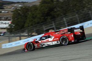 #31: Action Express Racing Cadillac DPi, DPi: Felipe Nasr, Pipo Derani