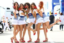 Reizende Gridgirls von Red Bull