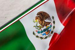 Detalle de la bandera de México