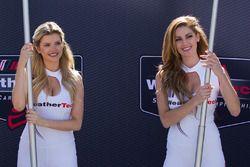 Hermosas chicas del WeatherTech