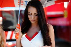 Une charmante gridgirl Ducati Team