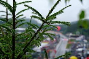 Rain in Spa